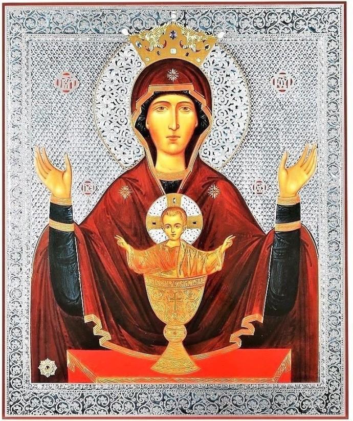sophia icon 1